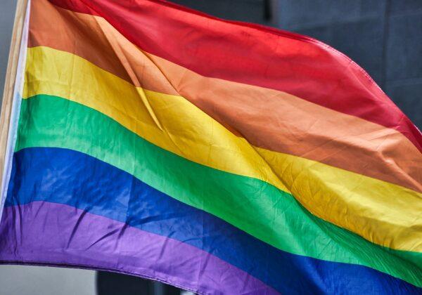 Desafíos en la terapia familiar en contexto de diversidad sexual